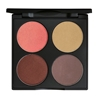 Picture of 4 Pan Palette - Composing Colour Brown Eyes